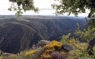 Arribes del Duero, Paraíso Natural
