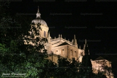 Catedral-scaled-1