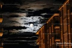 luz-de-luna-lunera-scaled