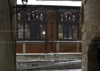 salamanca nevada 1