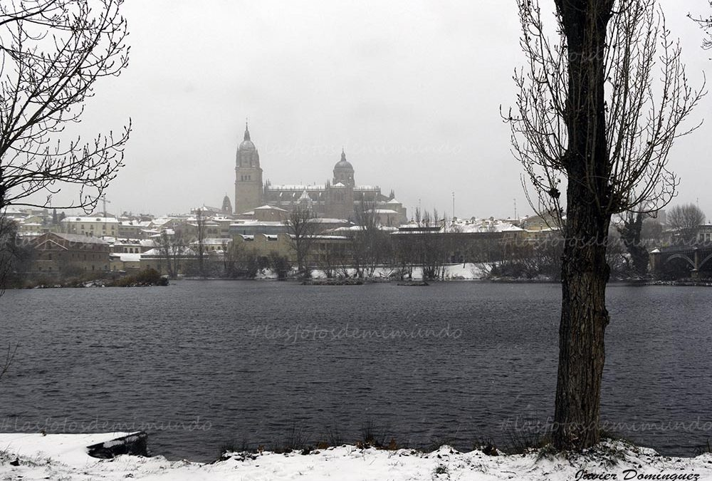 Salamanca se viste de novia.