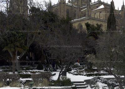 salamanca nevada 14