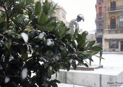 salamanca nevada 3