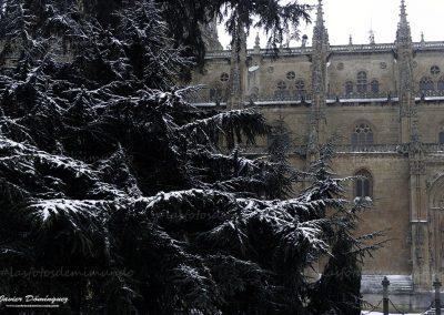 salamanca nevada 4