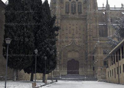 salamanca nevada 7