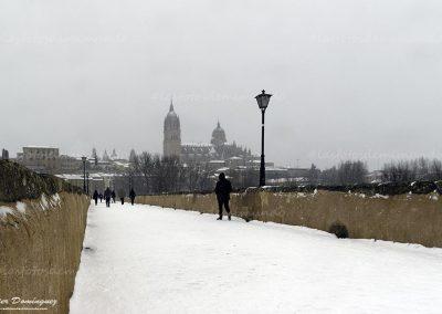 salamanca nevada 8